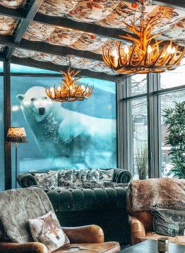 Discover Rovaniemi: Arctic Light Hotel